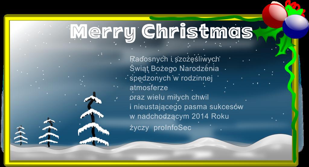 Radosnych i szczęśliwych Świąt Bożego Narodzenia spędzonych w rodzinnej atmosferze oraz wielu miłych chwil i nieustającego pasma sukcesów w nadchodzącym 2014 Roku życzy proInfoSec